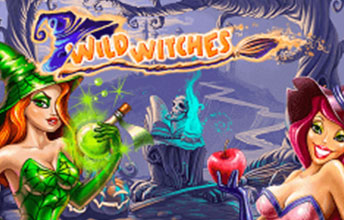 Wild Witch Slot